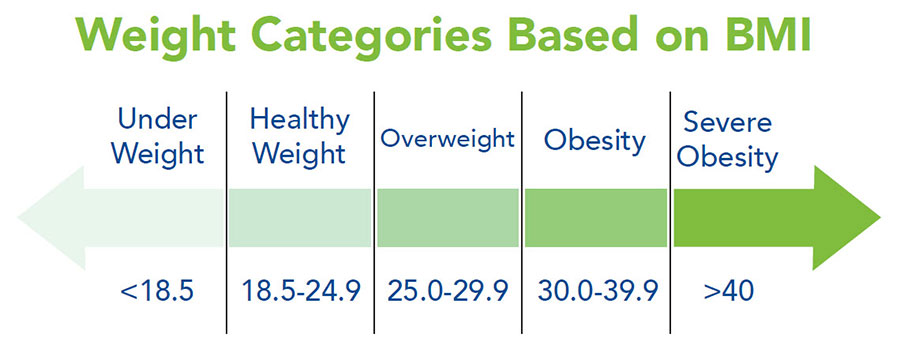 BMI weight categories chart